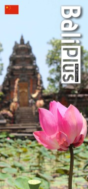BALI PLUS (Mandarin) Magazine Cover February 2020